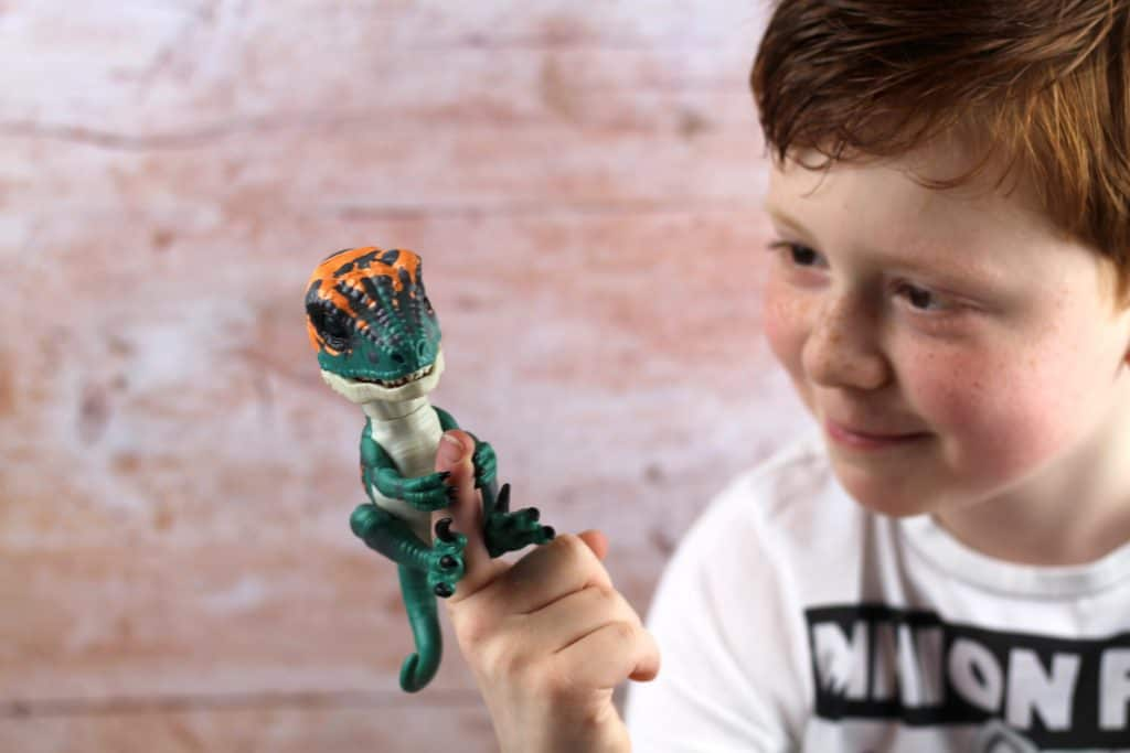 Untamed Raptor Dino little boy