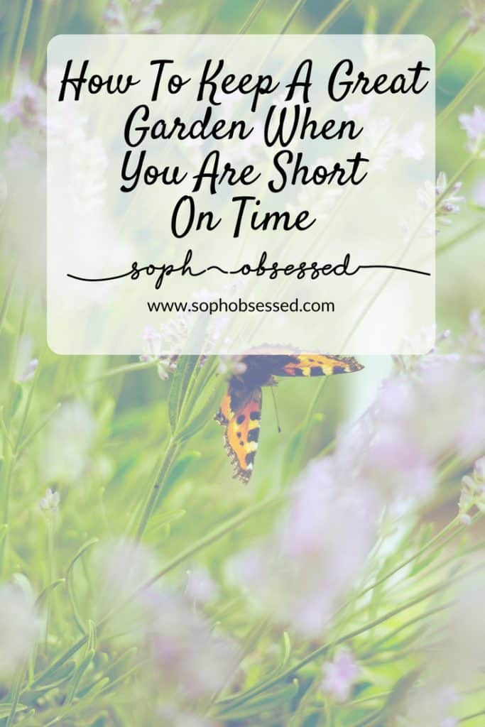 It's been nice weather but after winter the garden needs a bit of TLC. Here are my top tips for keeping a great garden when you are short on time.