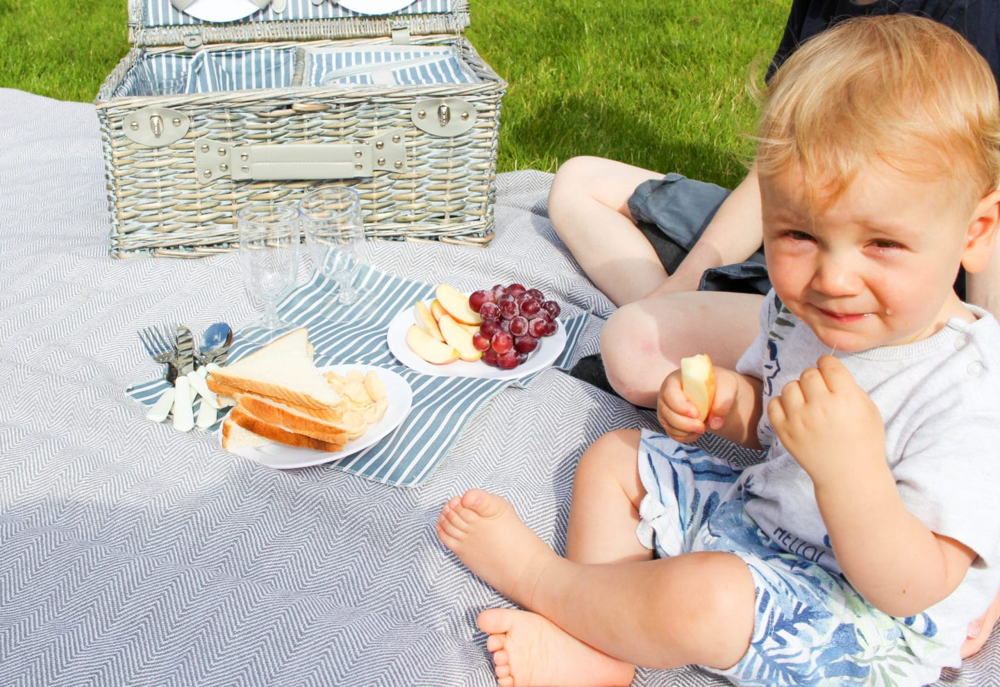 Why A Family Picnic Is A Winning Idea (AD)